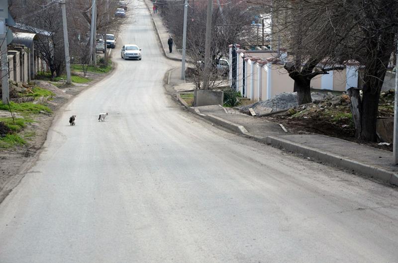 trotuar-po-ulitse-nekrasova-v-sevastopole005