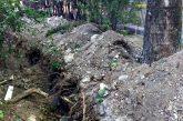 Общественные слушания о парке Севастопольских курсантов