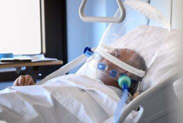 В Севастополе зарегистрировано шесть новых случаев заболевания Covid-19 и скончался ветеран войны
